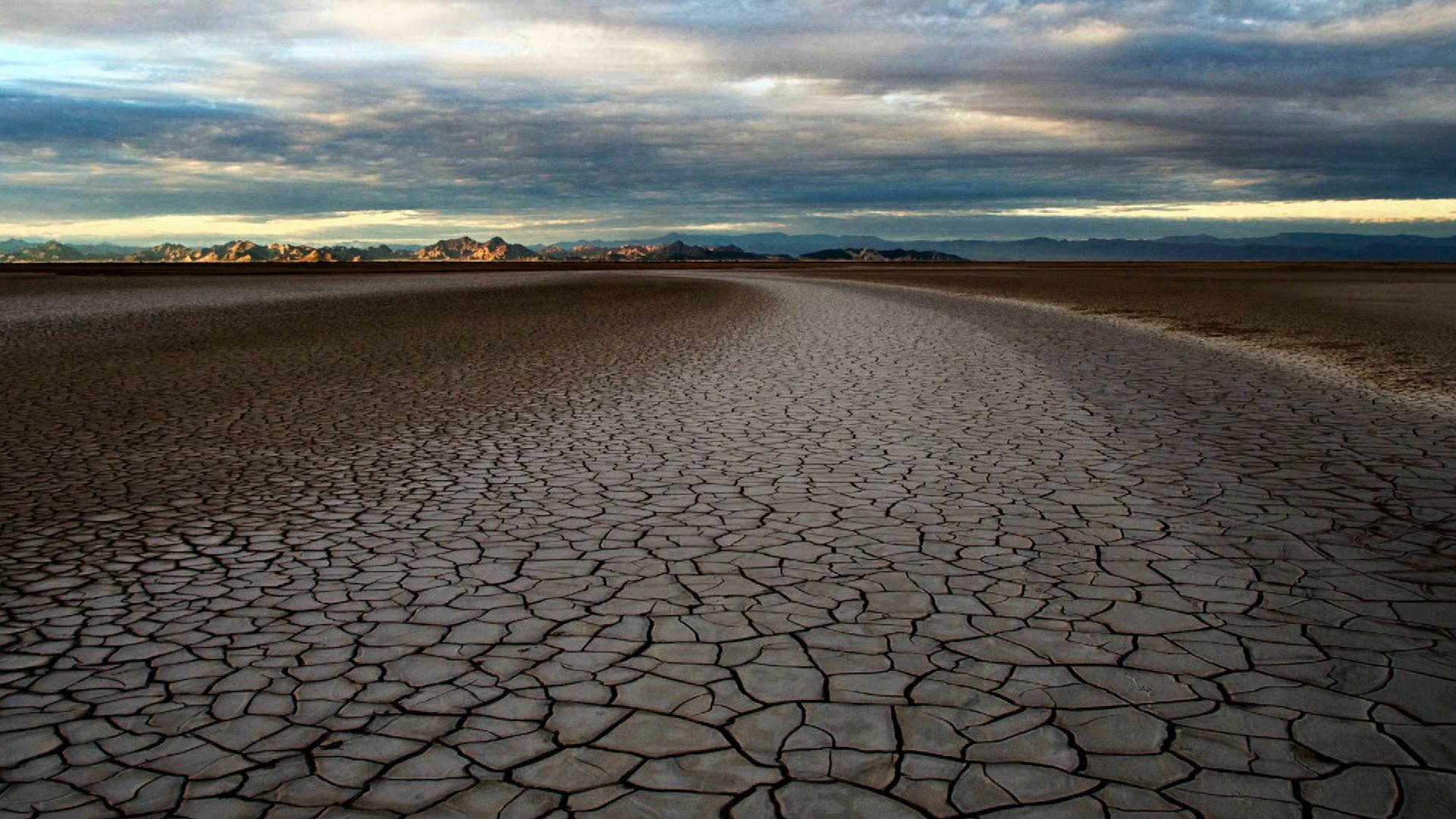 تابستان و حسرت : هشدار تابستانه از دیدگاه MBTI