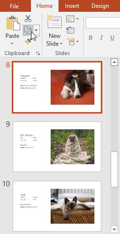 اصول اولیه ایجاد اسلاید:آموزش کاربردی و فارسی PowerPoint 2016 (درس پنجم)