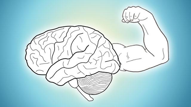 نظریه های روانشناسی فروید-واکنش وارونه، تسلیم ایثار گونه و همانند سازی با پرخاشگر