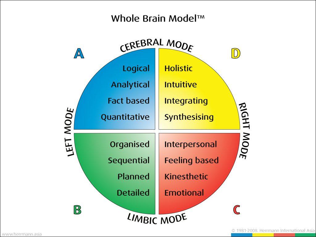 چگونه یک مدیر می تواند مهارت های خود را با تسلط بر تفکر بخش های چهارگانه مغزی ارتقا دهد؟
