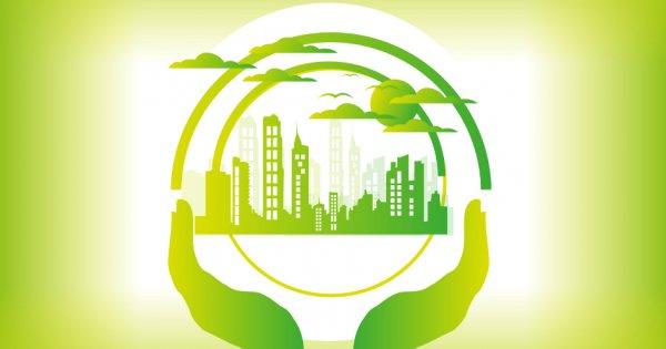 بهره وری سبز (مروری بر کاربردها و مراحل مدیریت بهره وری سبز)
